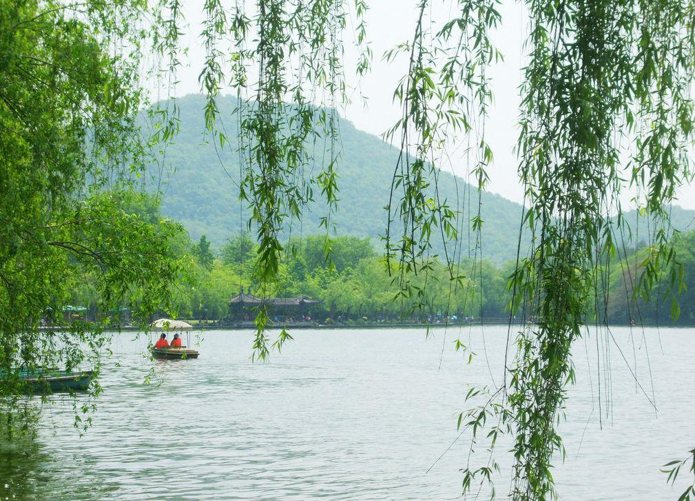 浙江杭州千岛湖桃花盛开的图片